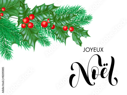 Noel french merry christmas hand drawn quote calligraphy and noel french merry christmas hand drawn quote calligraphy and christmas holly wreath for holiday greeting card m4hsunfo