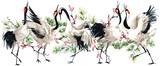Japanese crane bird seamless pattern, watercolor illustration.  - 182022881