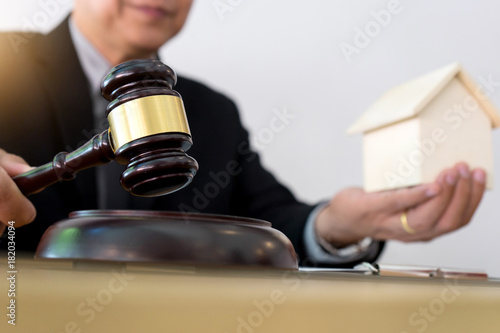 Gavel concept auction good product like home Canvas Print