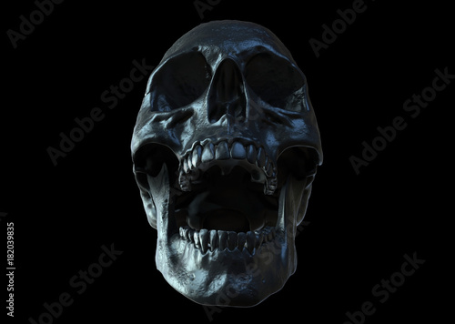 Obraz na plátně  Skull screaming isolated in black background 3d render