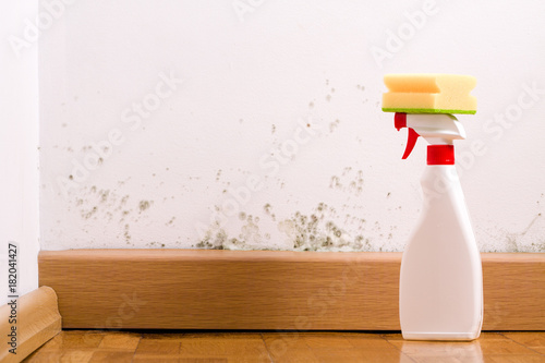 Valokuva Spray to remove mould on the wall in house