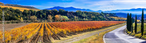 Keuken foto achterwand Toscane Traditional countryside and landscapes of beautiful Tuscany. vineyards and cypresses. Italy