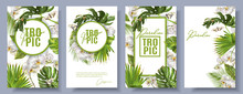 Tropic Orchid White Set