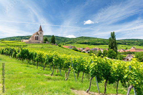 Photo old church and vineyards in Hunawihr village in Alsace, France