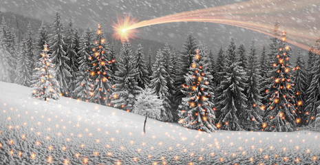 Panel Szklany Góry Ukrainian Carpathians snowy forest