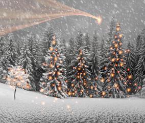 Fototapeta Boże Narodzenie/Nowy Rok Ukrainian Carpathians snowy forest