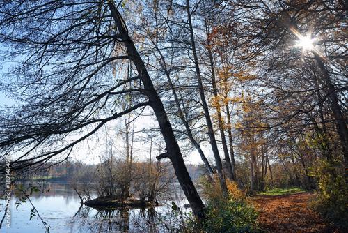 Papiers peints Cappuccino étang de Grez sur Loing dans le parc régional naturel du Gâtinais français
