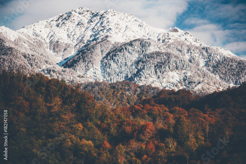 Foto op Aluminium Diepbruine Snowy Mountains with Autumn Forest Landscape background Travel serene scenic view