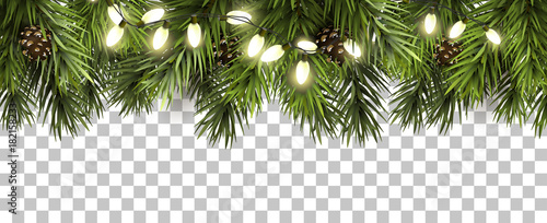 Fotomural Christmas border with fir branches and pine cones on transparent background