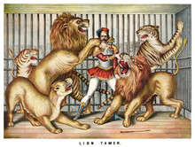 Brave Lion Tamer Surrounded By...