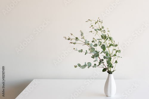 Eucalyptus Leaves In Small White Vase On Table Against Neutral