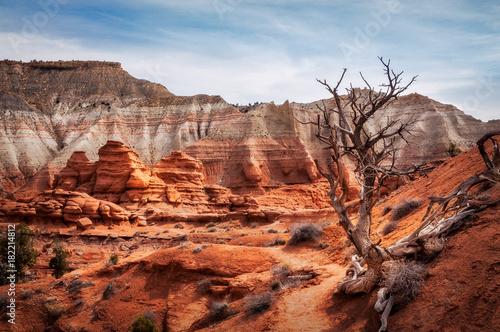 Photo Picturesque Trail through Kodachrome Basin State Park, Utah, USA.