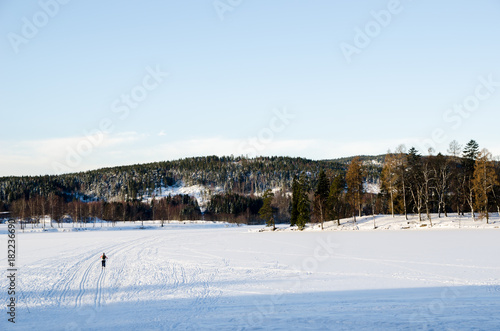A person practicing ski on the frozen lake of Bogstadvannet in Oslo Norway Poster