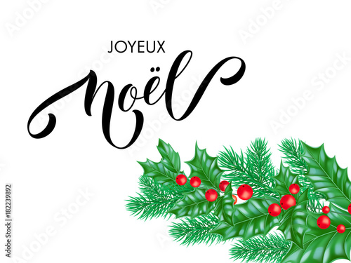 Joyeux noel french merry christmas holiday hand drawn quote joyeux noel french merry christmas holiday hand drawn quote calligraphy lettering greeting card background template m4hsunfo