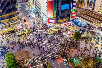 Fototapeta Shibuya, Tokyo, Japan