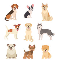 Dogs Collection. Vector Illust...