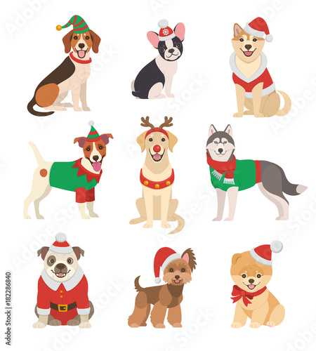 Christmas Dogs collection. Vector illustration of funny ...