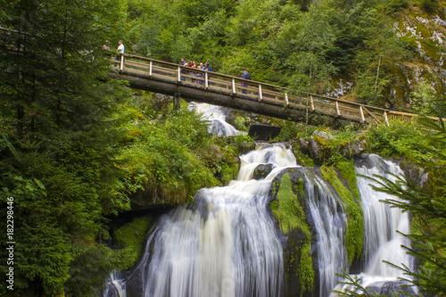 Fototapeta premium Triberg Falls w regionie Schwarzwaldu, Niemcy