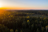 Aerial view of autumn forest in Estonia. Sunset over the forest.