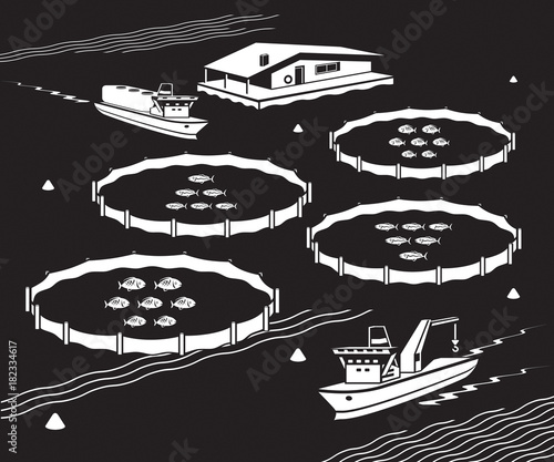 Sea fish farm - vector illustration Wallpaper Mural