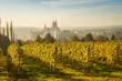 canvas print picture - Stadtansicht Meißen im Herbst zur Weinlesezeit