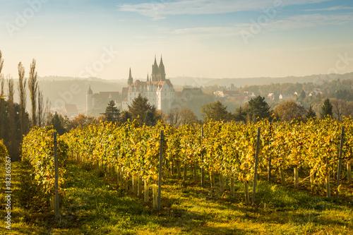 Stampa su Tela  Stadtansicht Meißen im Herbst zur Weinlesezeit