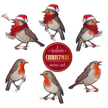 Christmas Robin. Set Of 6 Hand...