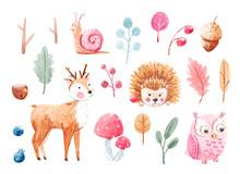 Cute Watercolor Animal Set