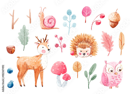 Tuinposter Uilen cartoon Cute watercolor animal set