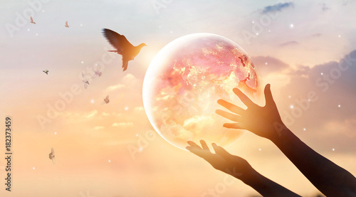Canvas Print - Woman touching planet earth of energy consumption of humanity at night, and free on sunset background, hope concept, Elements of this image furnished by NASA