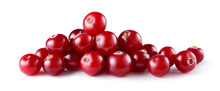 Cranberry Isolated. Cranberry ...