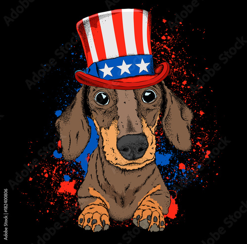 Dog In Old American Hat With A Flag National Symbols Of The Usa