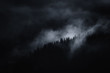 dark landscape, misty mountain with trees at night