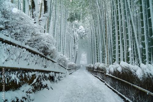 Spoed Foto op Canvas Kyoto 京都嵐山竹林の雪景色