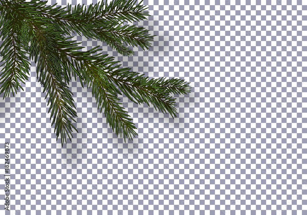Fototapeta Christmas, New Year. Realistic green tree branch and its shadow. Against the background of the checkered. illustration