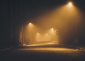 Night street in the fog.  L...