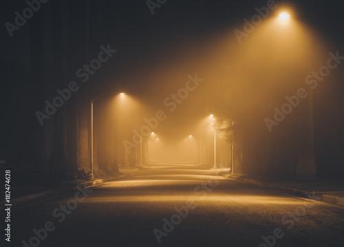 Fotografia, Obraz Night street in the fog