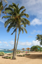 Turtle Bay Resort, Oahu, Hawaii