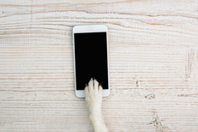 Dog Paw On A Mobile Phone Scre...