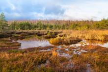 Landscape, Sulphur Isotopic Bog
