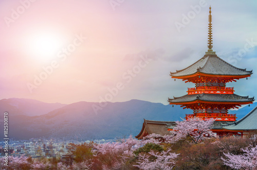 Poster Kyoto Evening. Pagoda with sky and cherry blossoms on the background.