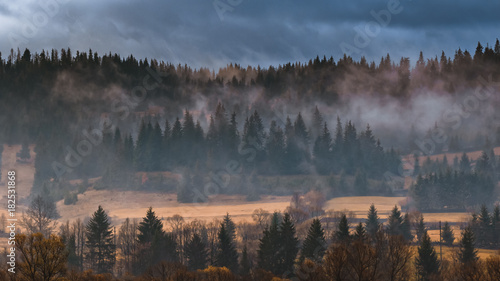 Canvas Prints Morning with fog autumn landscape with fog