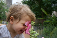Beautiful Laughing Child And Hollyhock Flower In Summer Garden