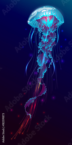 Cuadros en Lienzo Vector illustration of fantasy glowing jellyfish in the ocean