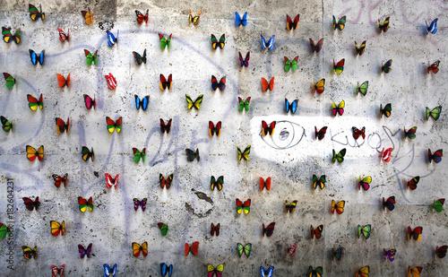 Foto auf AluDibond Schmetterlinge im Grunge Butterflies on wall