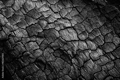 Printed kitchen splashbacks Firewood texture Burnt wood texture