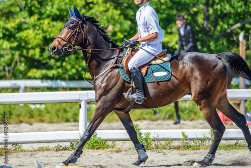 La pose en embrasure Equitation 乗馬風景