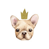 Cute french bulldog with crown. - 182670456
