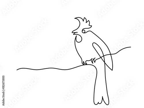 Winter Bird On Tree Branch Continuous Line Drawing Vector