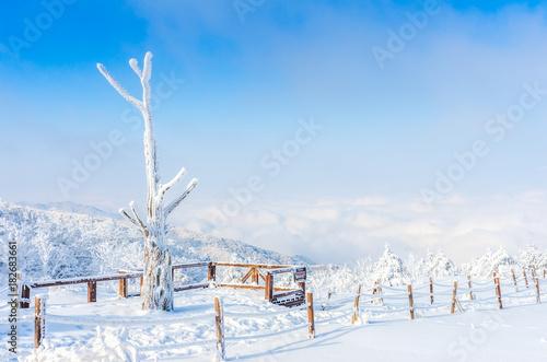 Zdjęcie XXL zimowy krajobraz w górach z padającego śniegu w Seulu, w Korei Południowej.